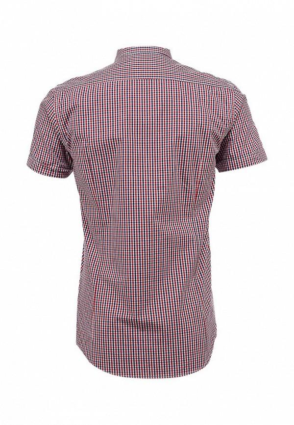 Рубашка Best Mountain CHCE1457H: изображение 2