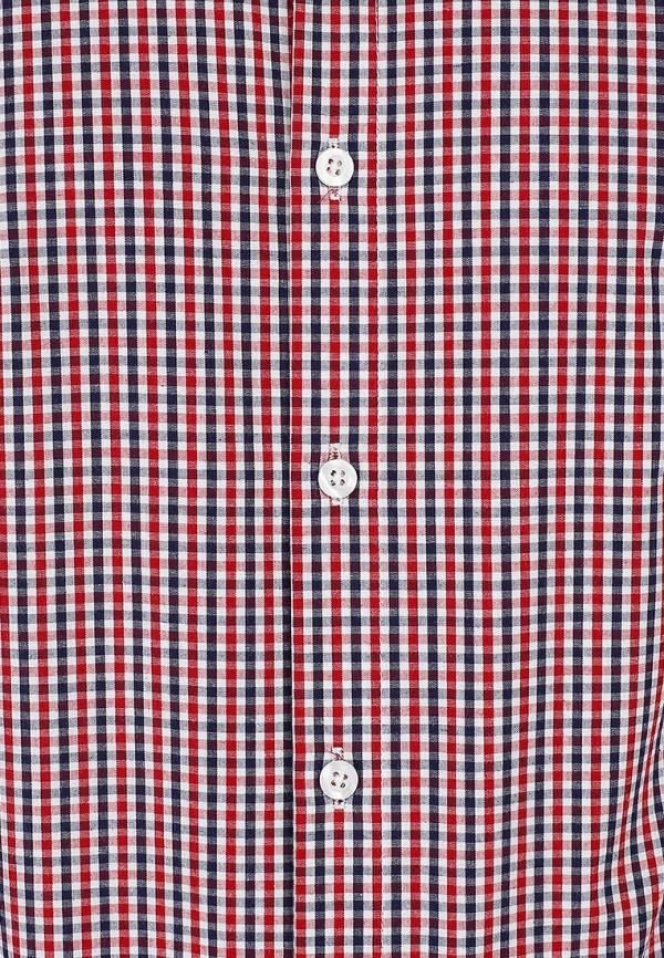 Рубашка Best Mountain CHCE1457H: изображение 3