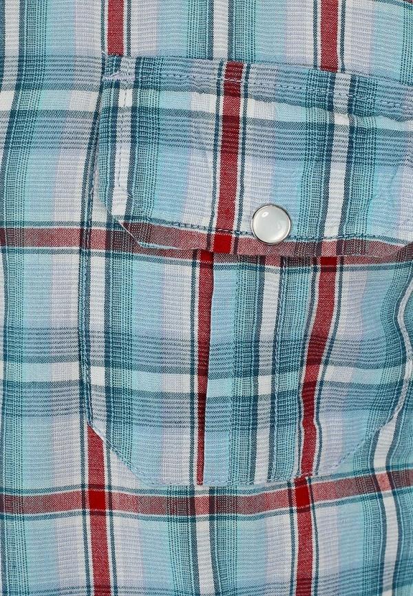 Рубашка Best Mountain CHCE1442H: изображение 3