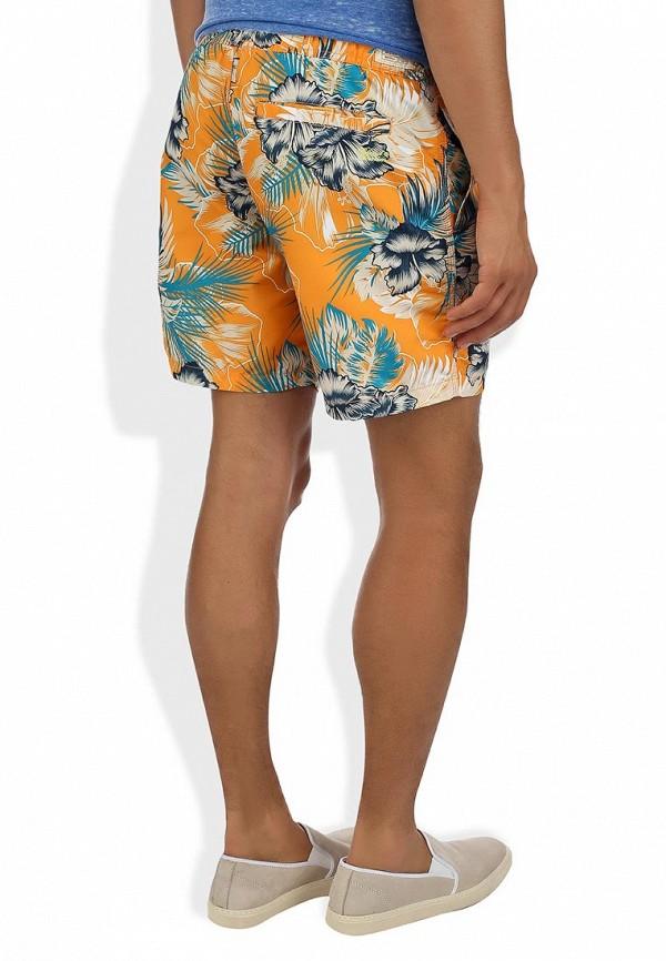 Мужские шорты Blend (Бленд) 701655CA: изображение 5