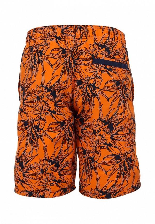 Мужские шорты Blend (Бленд) 701010: изображение 2