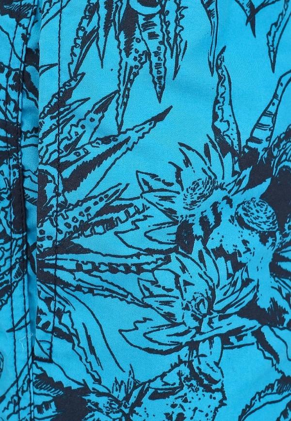 Мужские плавки Blend (Бленд) 701010: изображение 3