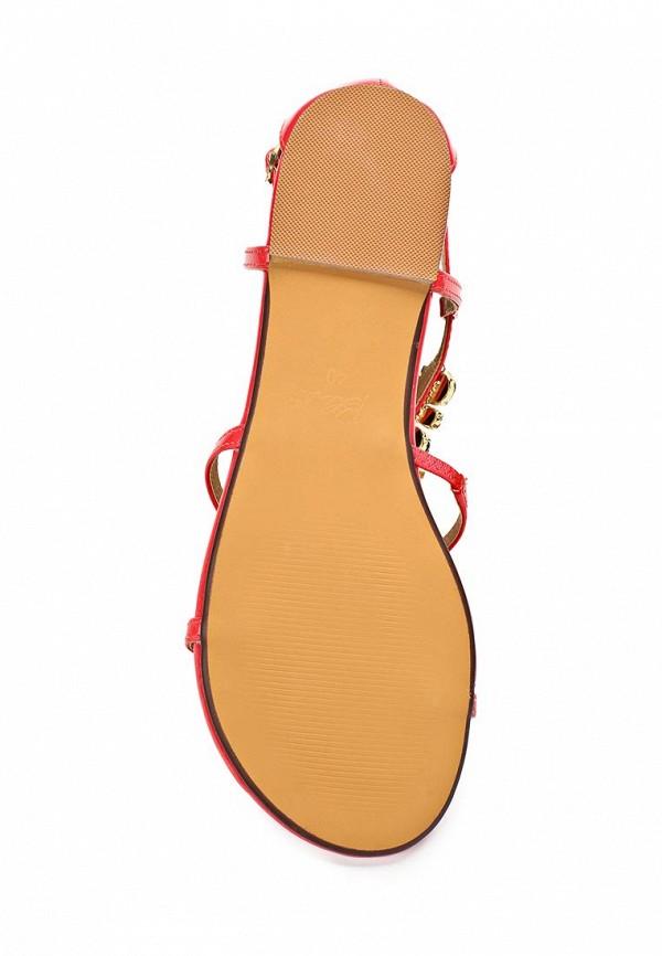 Женские сандалии Blink 801995-H-33: изображение 2