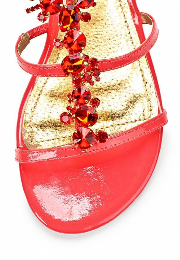 Женские сандалии Blink 801995-H-33: изображение 5