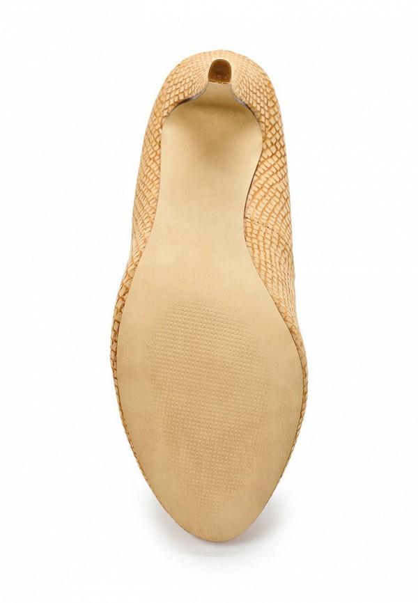 Туфли на шпильке Blink 700814-CE-24: изображение 3
