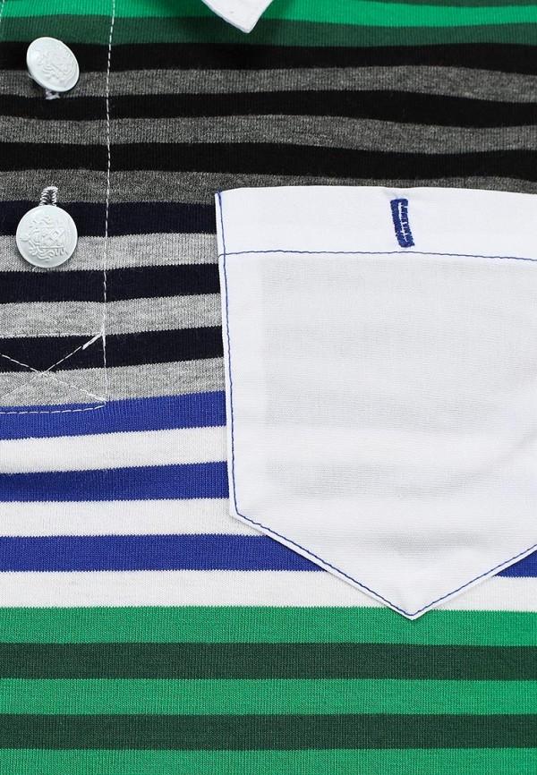 Футболка Born 13-1034-EGзеленый/синий: изображение 3