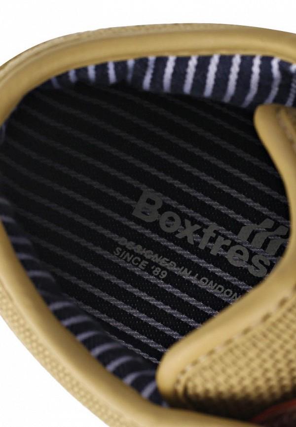Мужские кеды Boxfresh E12860: изображение 7