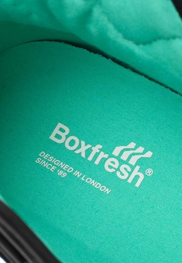Мужские кроссовки Boxfresh E13364: изображение 12