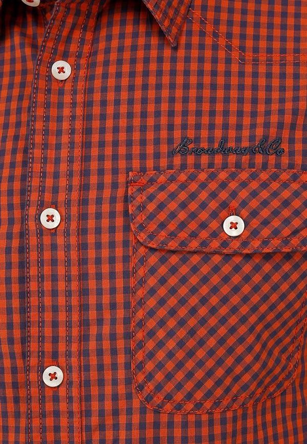 Рубашка Broadway (Бродвей) 10150523  58A: изображение 3
