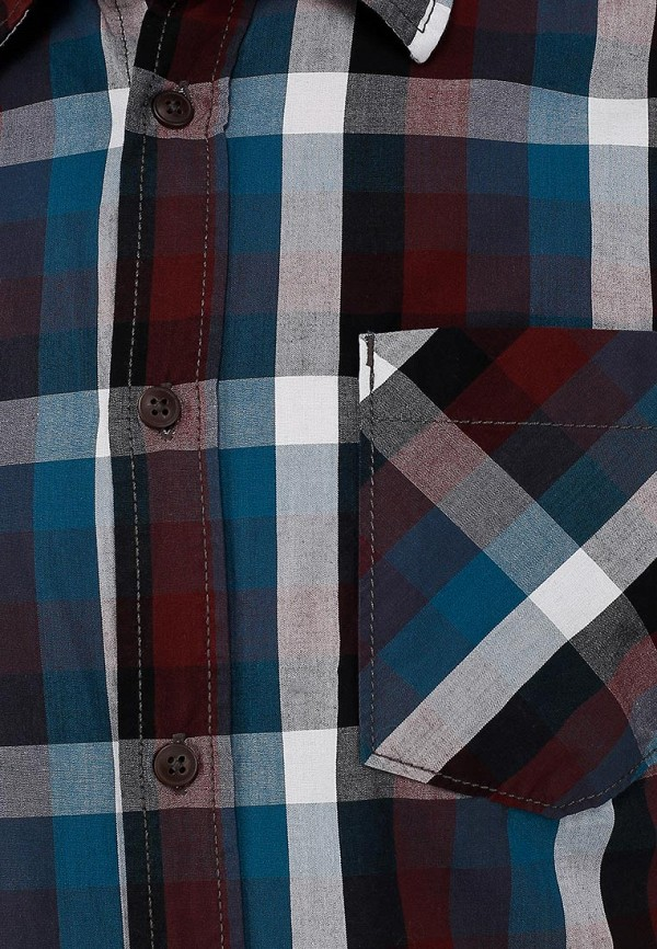 Рубашка Broadway (Бродвей) 10150532  31D: изображение 3