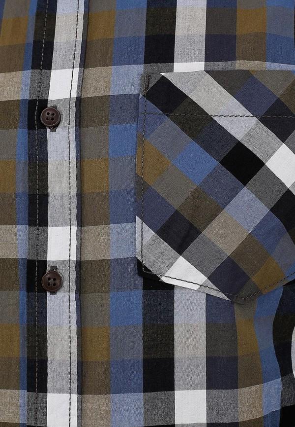 Рубашка Broadway (Бродвей) 10150532  578: изображение 3
