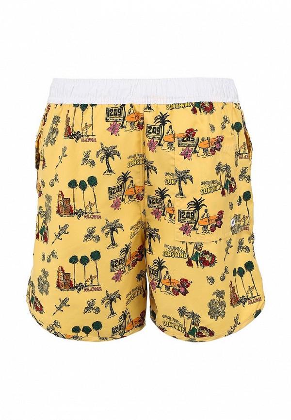 Мужские шорты для плавания Brave Soul MSRT-BARRACUDA: изображение 2