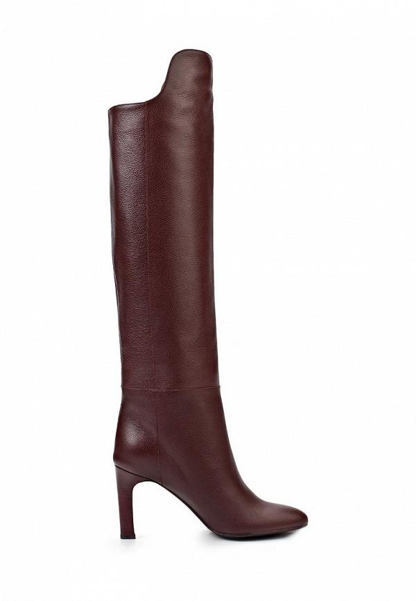 фото Женские ботфорты на каблуке Bruno Magli BR833AWJT945, коричневые