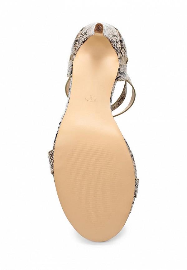 Босоножки на каблуке Camelot (Камелот) NEWBERRY-SS14S: изображение 5