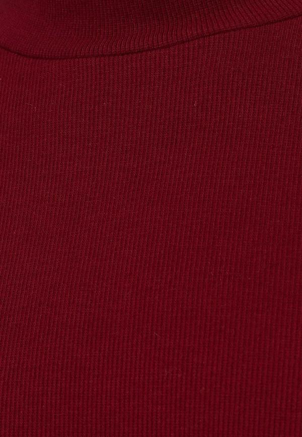Водолазка Camelot (Камелот) REDY-FW13C: изображение 3