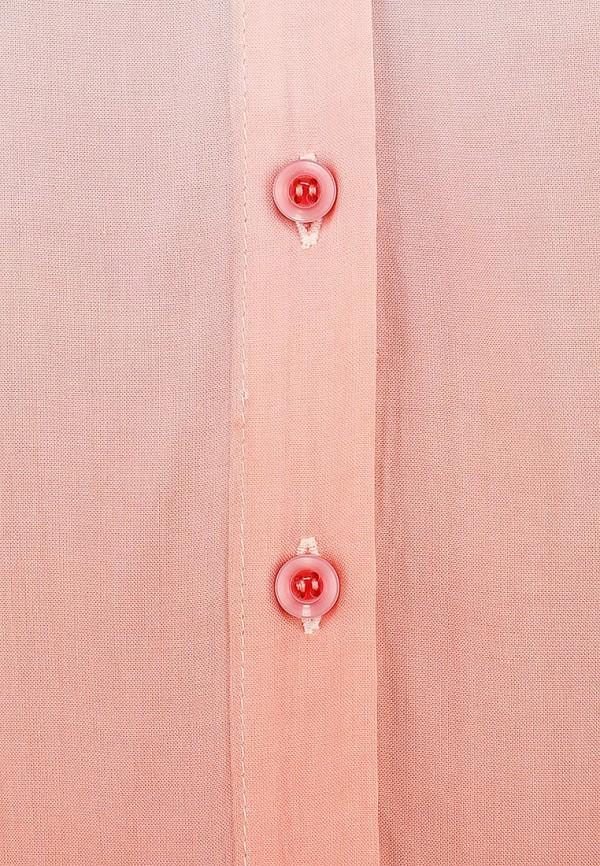 Блуза Camelot (Камелот) WT1338-SS14: изображение 5