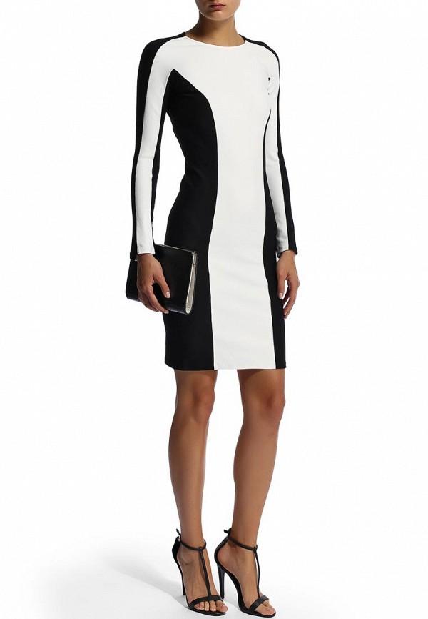 Платье-миди Camelot (Камелот) SLIM-FW14C: изображение 7
