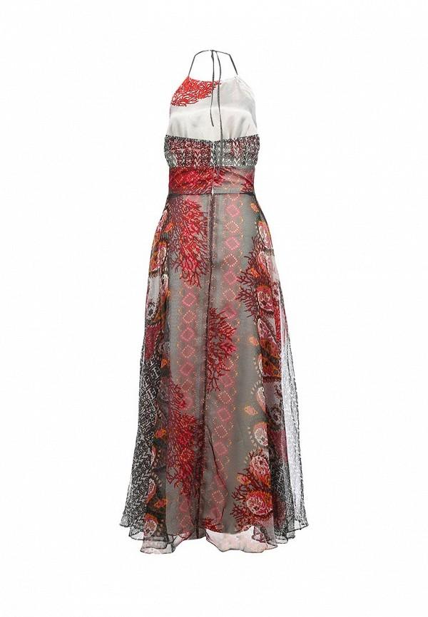 Платье-макси Camelot (Камелот) PATIKS-SS13C: изображение 2