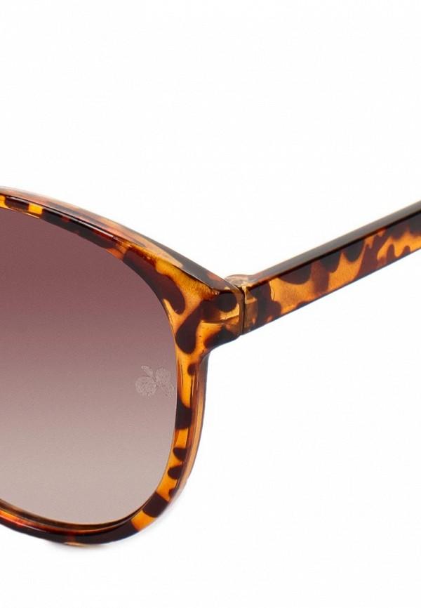фото Женские солнцезащитные очки Catwalk88 CA012DWAJP27 - картинка [5]