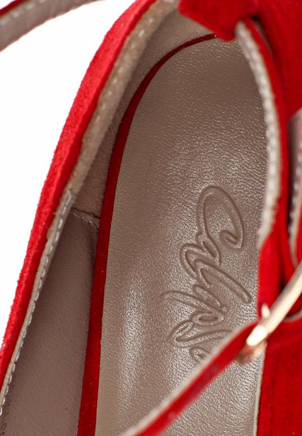 Туфли на шпильке Calipso 263-03-FX-04-VK-01: изображение 13