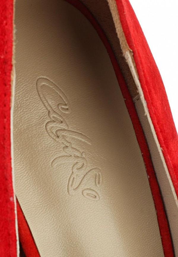 Туфли на каблуке Calipso (Калипсо) 045-01-ZC-04-VK-01: изображение 12