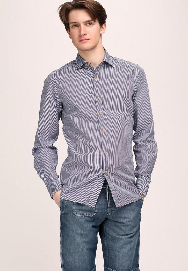 Рубашка Coast+Weber+Ahaus CO570EMBV586. Цвет: синий