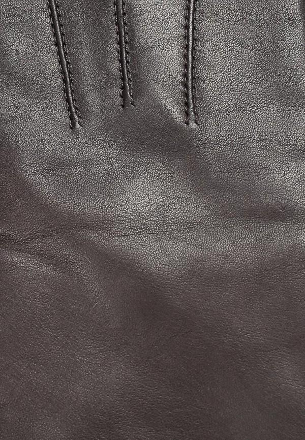 фото Перчатки женские Eleganzza EL116DWCKX64 - картинка [4]
