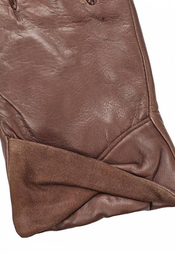 фото Перчатки женские Eleganzza EL116DWCKX93 - картинка [4]
