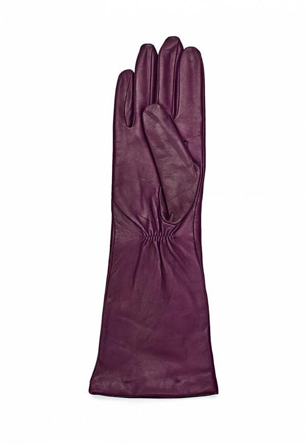 фото Перчатки женские Eleganzza EL116DWDAO42 - картинка [2]