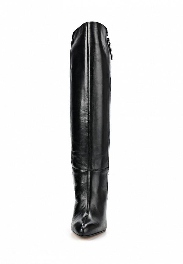 фото Женские сапоги-ботфорты French Connection FR003AWCNR87, черные на каблуке