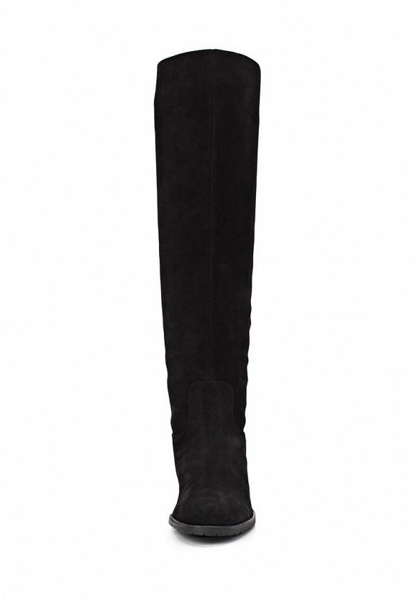 фото Женские сапоги-ботфорты Giotto GI514AWCPX30, черные велюровые
