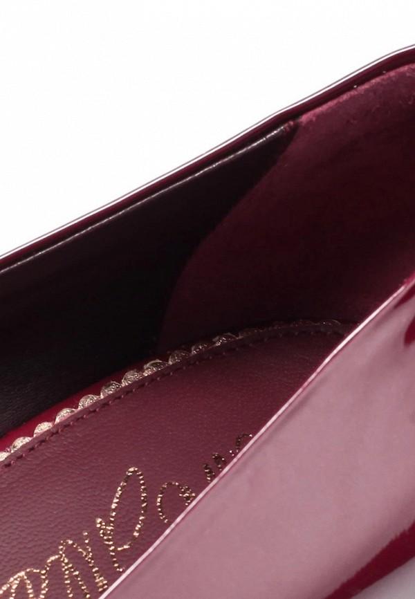 фото Туфли на платформе и высоком каблуке Le Silla LE682AWKD120, бордовые