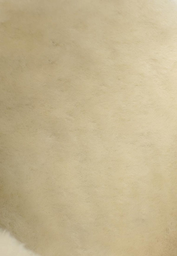 фото Женские полусапожки на танкетке Nando Muzi NA008AWBHL14, коричневые