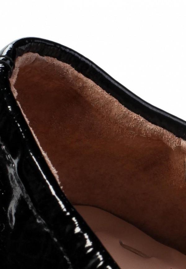 фото Балетки с острым носом Sprincway SP443AWFZ606, черные/золото (кожа, лак)