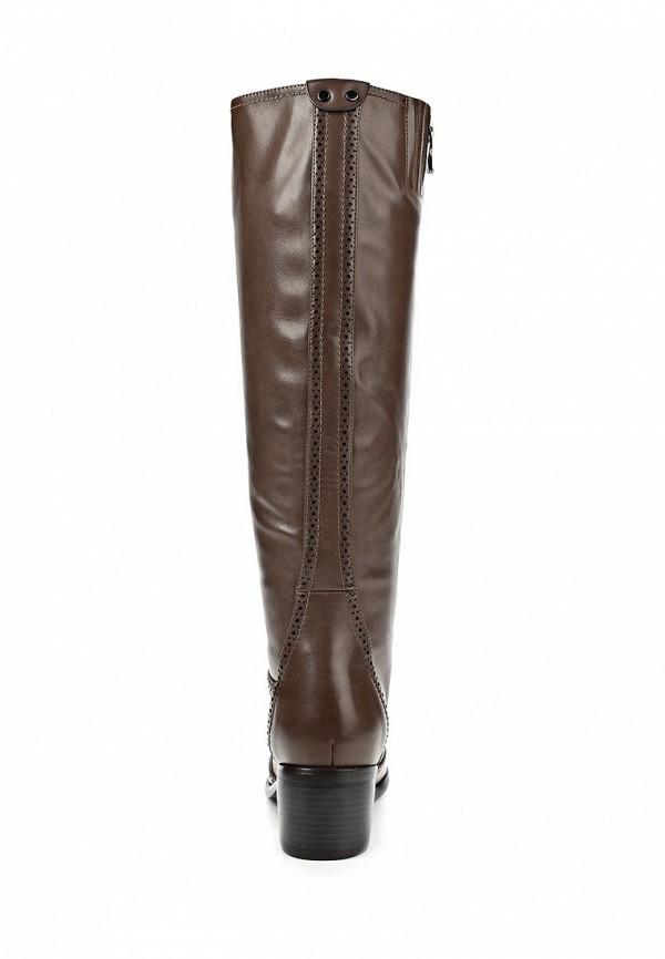 фото Сапоги на низком каблуке Wilmar WI064AWCBJ20, коричневые (кожа)